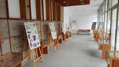 Мобилна изложба Емпорион Пистирос в Тракия - Изображение 1